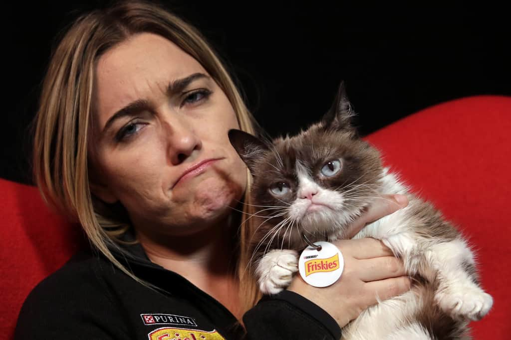 Tabatha Bundesen 5 Facts About Grumpy Cat's Owner